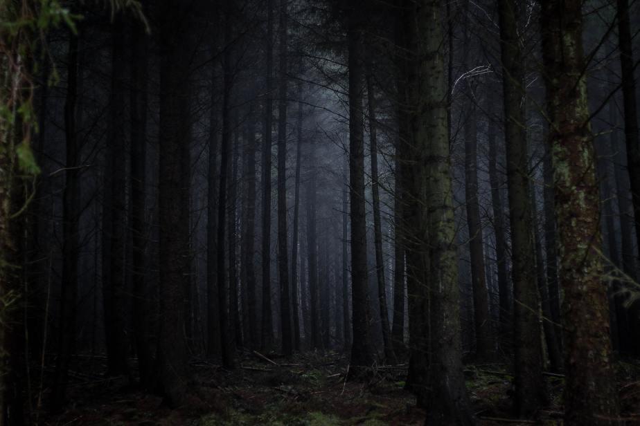 The Dark Path…